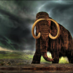 Mammoth may be resurrected sooner than you think
