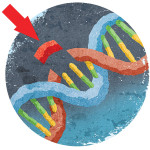 BIG IDEA: CRISPR REMAKES THE WORLD