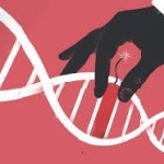 Researchers enhance CRISPR gene editing technology