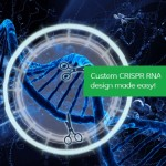 CRISPR Design Tools for Genome Editing: the full list with description