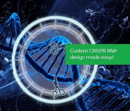 crispr tools target